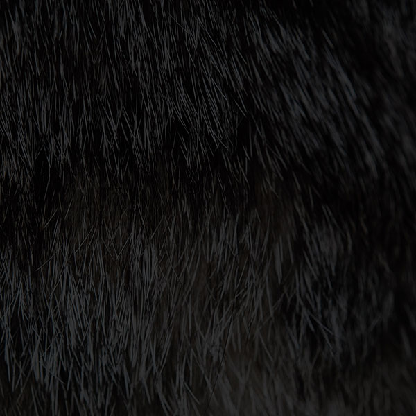 iPapers.co-Apple-iPhone-iPad-Macbook-iMac-wallpaper-va69-wallpaper-cat-fur-rawrdis-black-pattern