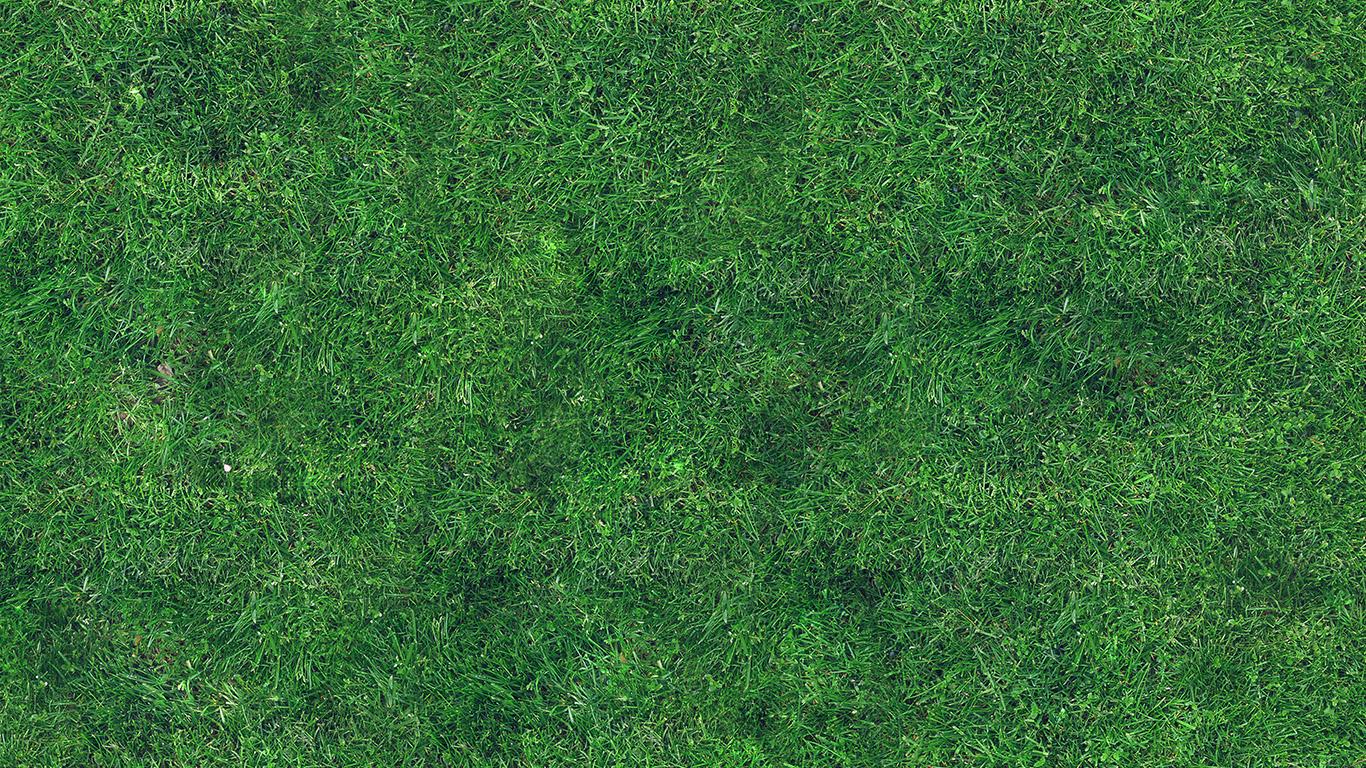 desktop-wallpaper-laptop-mac-macbook-airvg56-grass-texture-nature-pattern-wallpaper