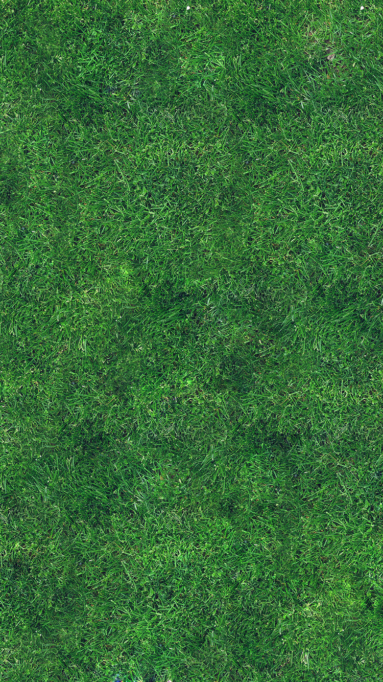 iPhone6papers.co-Apple-iPhone-6-iphone6-plus-wallpaper-vg56-grass-texture-nature-pattern