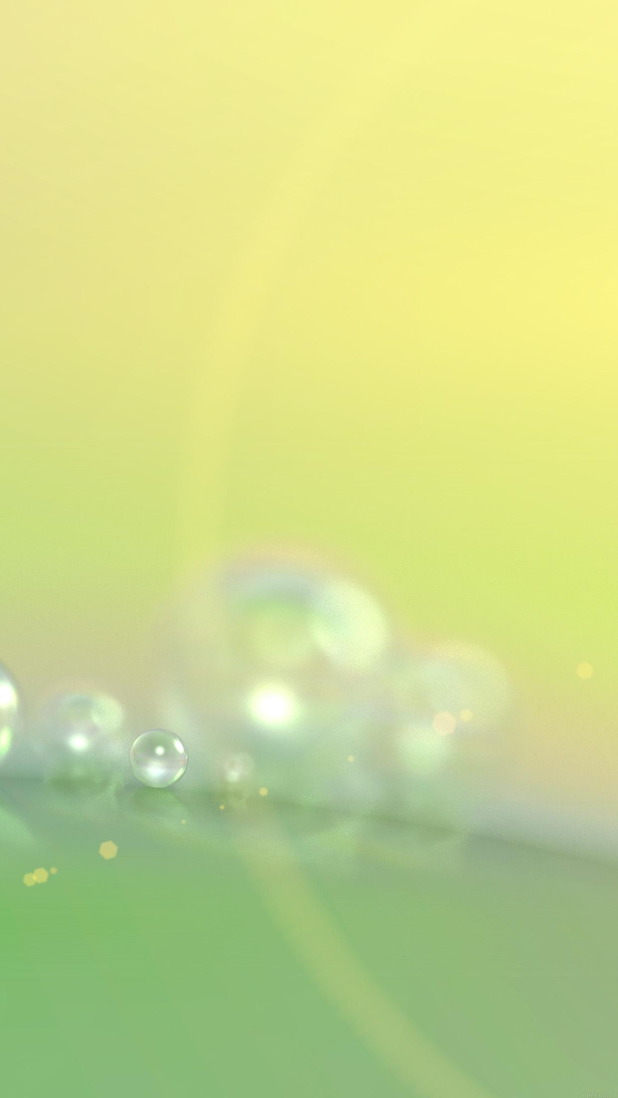 i love papers | vg73-rain-morning-dew-drop-green-blur-pattern