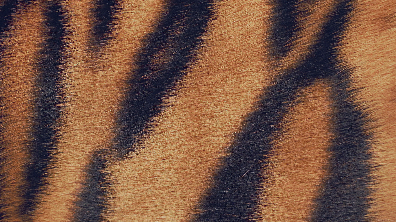 desktop-wallpaper-laptop-mac-macbook-airvh34-wild-cat-texture-fur-nature-pattern-wallpaper