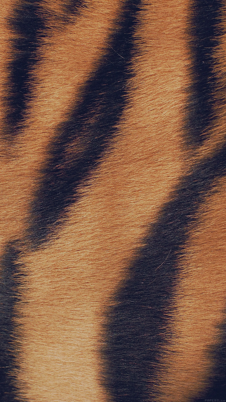 iPhone6papers.co-Apple-iPhone-6-iphone6-plus-wallpaper-vh34-wild-cat-texture-fur-nature-pattern