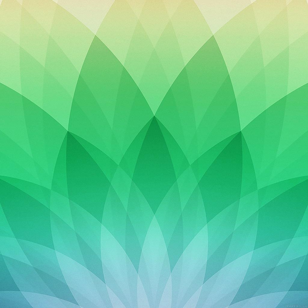 apple daily-best pattern