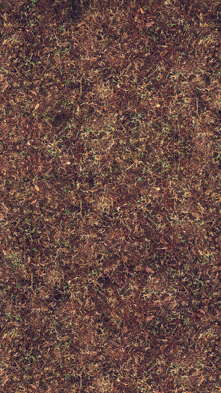 iPhone6papers.co-Apple-iPhone-6-iphone6-plus-wallpaper-vi39-grass-texture-pattern