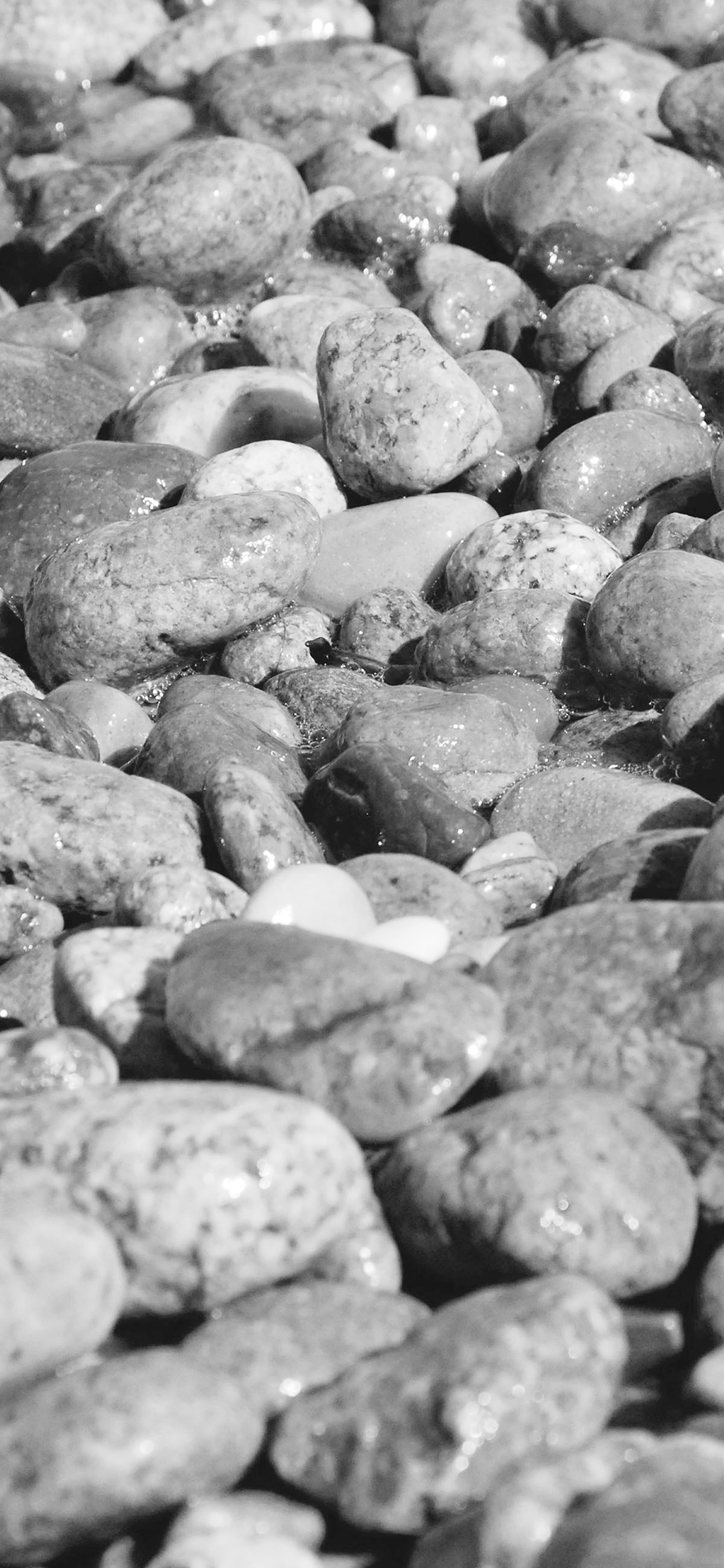 iPhonexpapers.com-Apple-iPhone-wallpaper-vi73-stone-rocks-beach-nature-pattern-white-bw