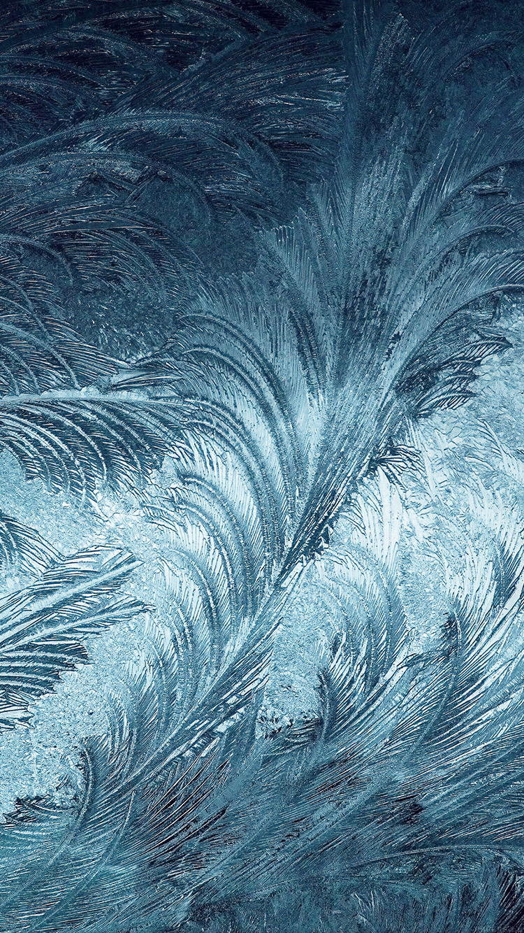 iPhone6papers.co-Apple-iPhone-6-iphone6-plus-wallpaper-vi82-winter-snow-window-cold-pattern-blue