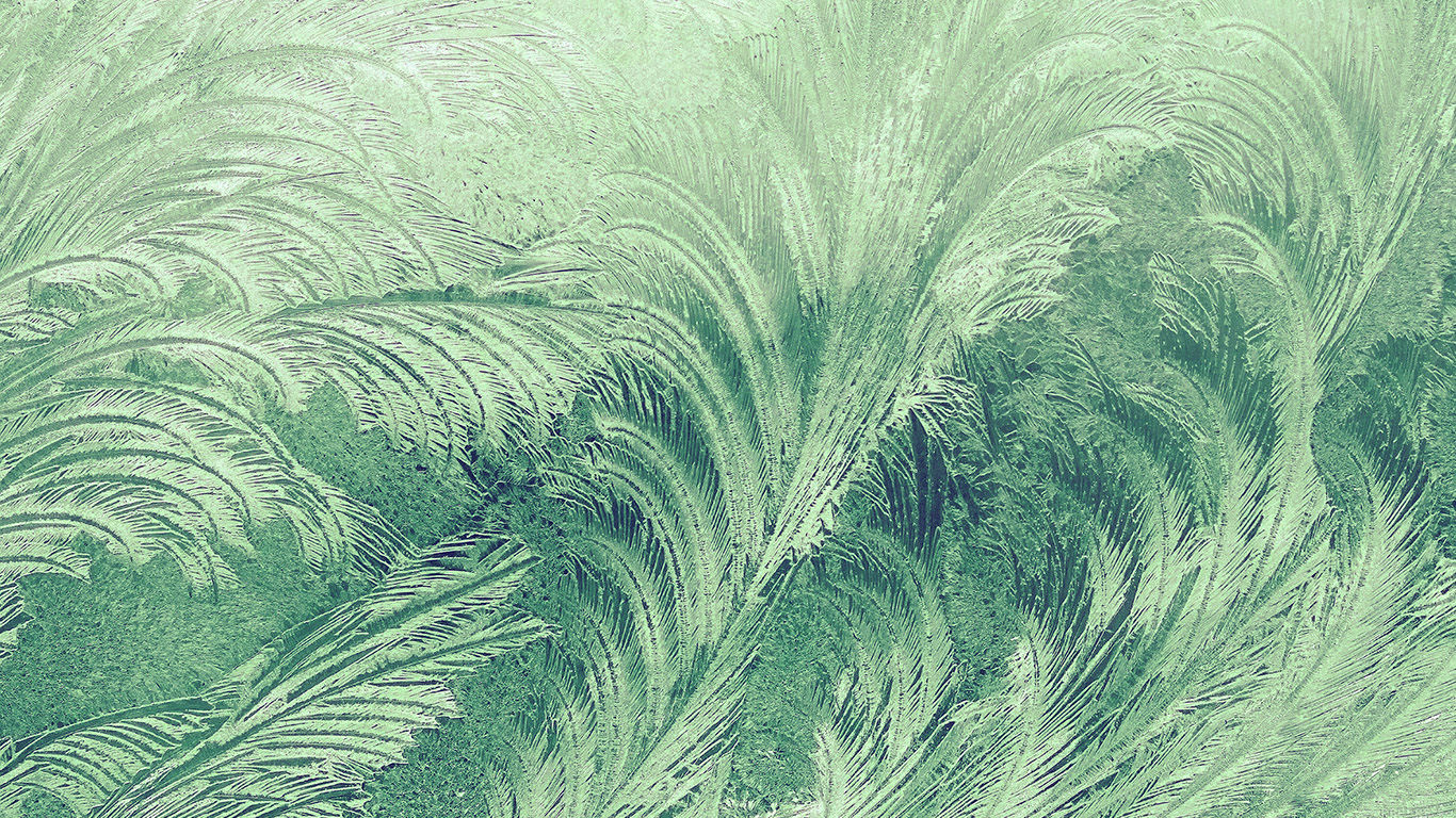 desktop-wallpaper-laptop-mac-macbook-airvi84-winter-snow-window-cold-pattern-green-wallpaper