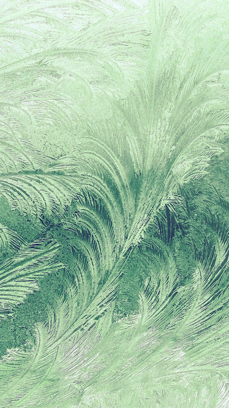 iPhone6papers.co-Apple-iPhone-6-iphone6-plus-wallpaper-vi84-winter-snow-window-cold-pattern-green