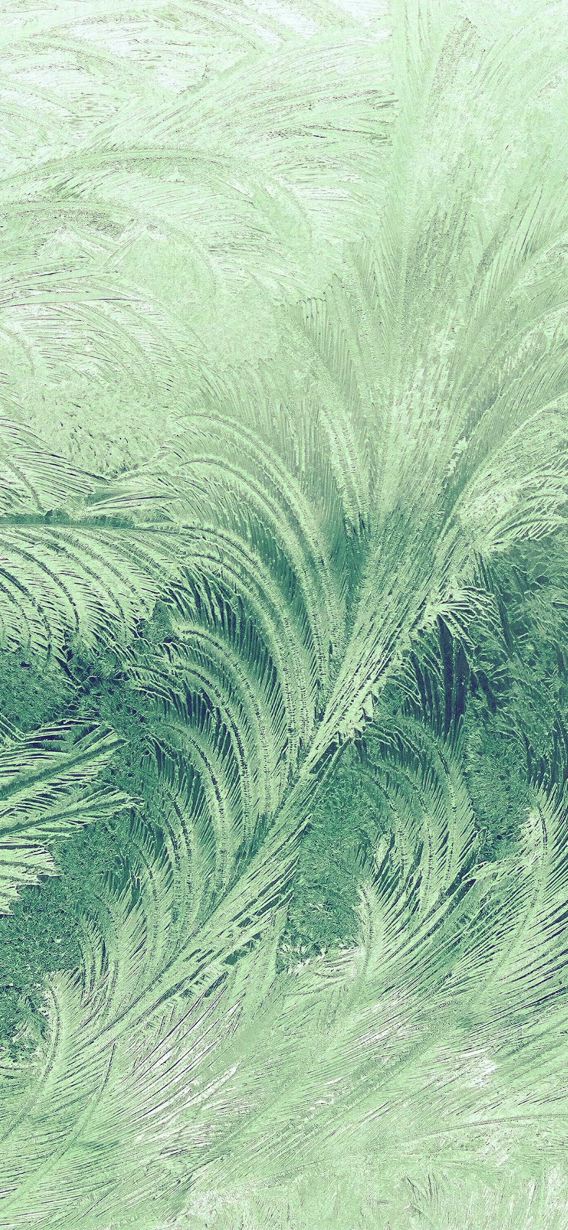 iPhoneXpapers.com-Apple-iPhone-wallpaper-vi84-winter-snow-window-cold-pattern-green
