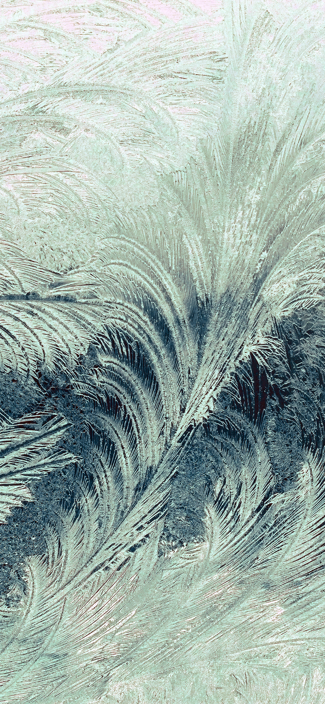 iPhoneXpapers.com-Apple-iPhone-wallpaper-vi85-winter-snow-window-cold-pattern-dark-green