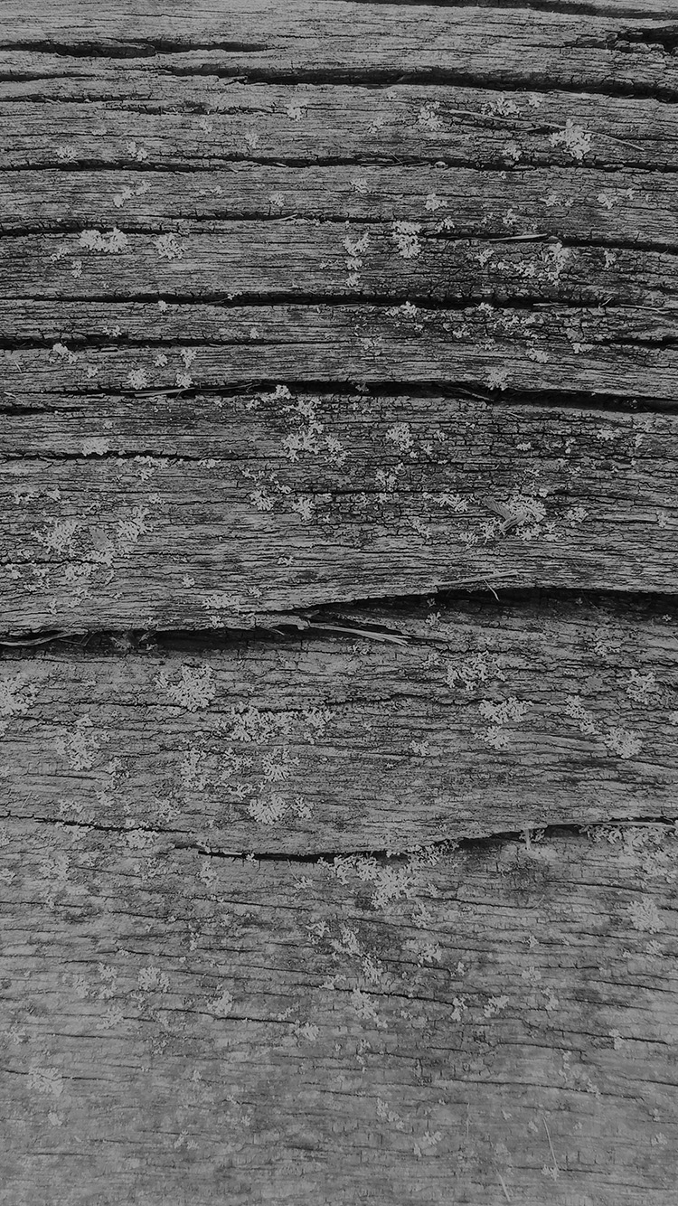 iPhone6papers.co-Apple-iPhone-6-iphone6-plus-wallpaper-vj33-wood-art-nature-pattern-dark-bw