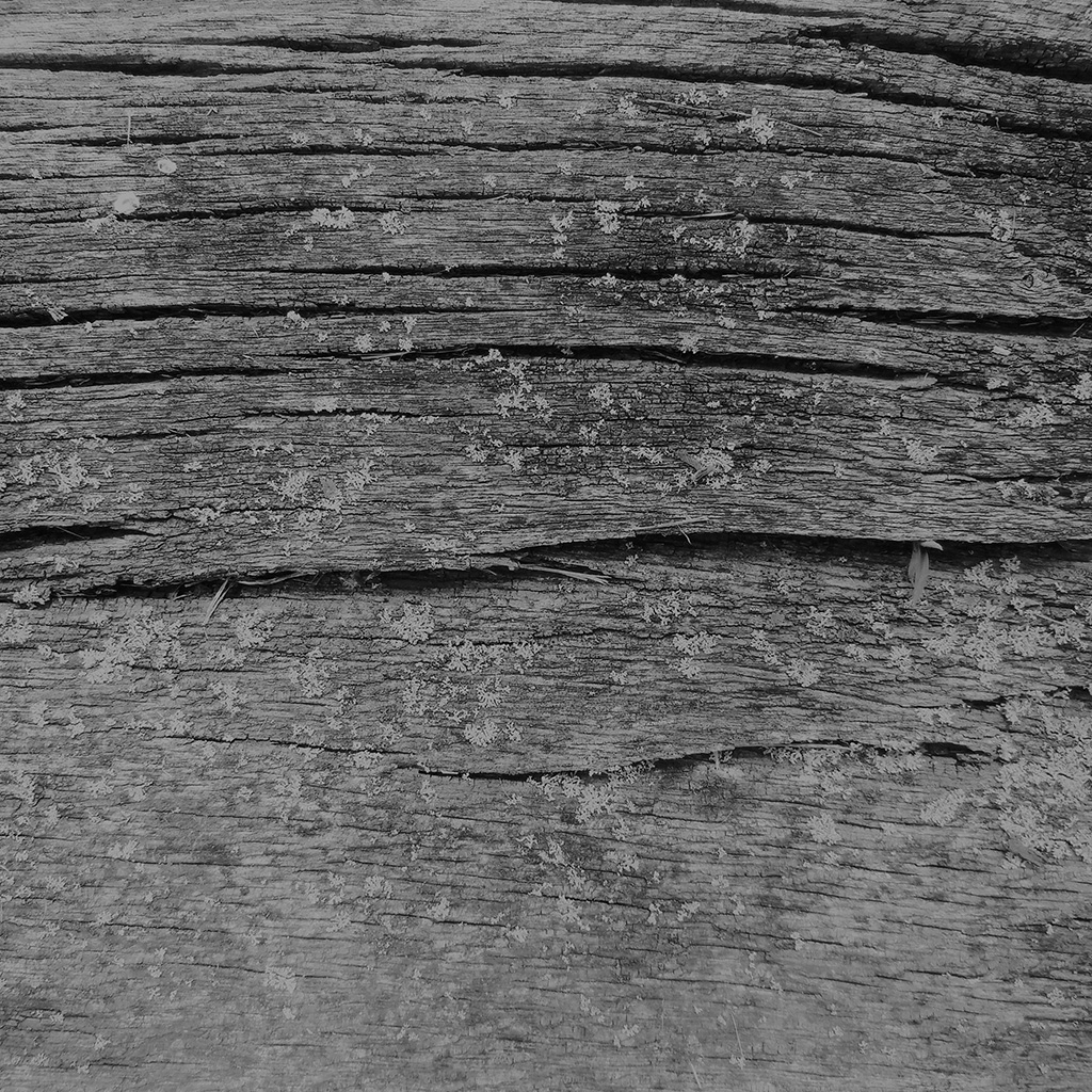 android-wallpaper-vj33-wood-art-nature-pattern-dark-bw-wallpaper