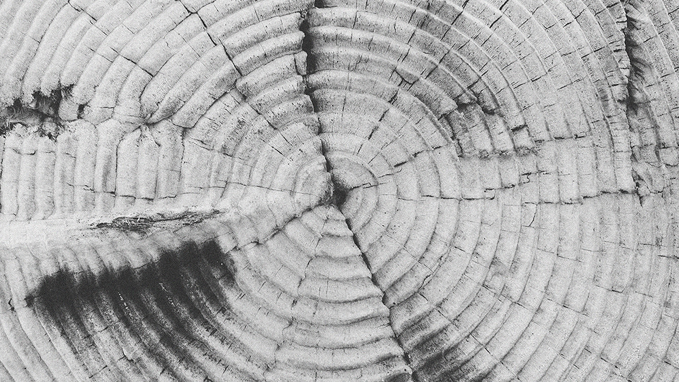 desktop-wallpaper-laptop-mac-macbook-airvj38-old-tree-texture-pattern-bw-wallpaper