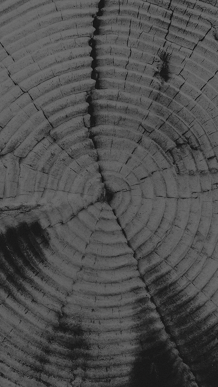 Papers.co-iPhone5-iphone6-plus-wallpaper-vj39-old-tree-texture-pattern-bw-dark