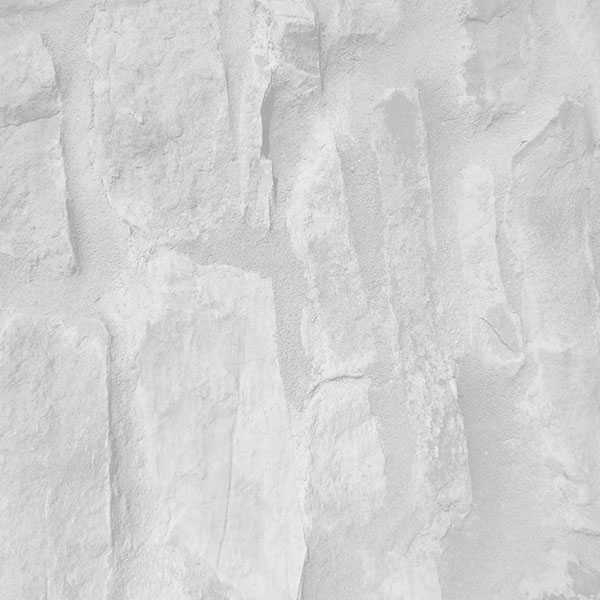 iPapers.co-Apple-iPhone-iPad-Macbook-iMac-wallpaper-vj43-brick-wall-texture-pattern-white-bw-wallpaper