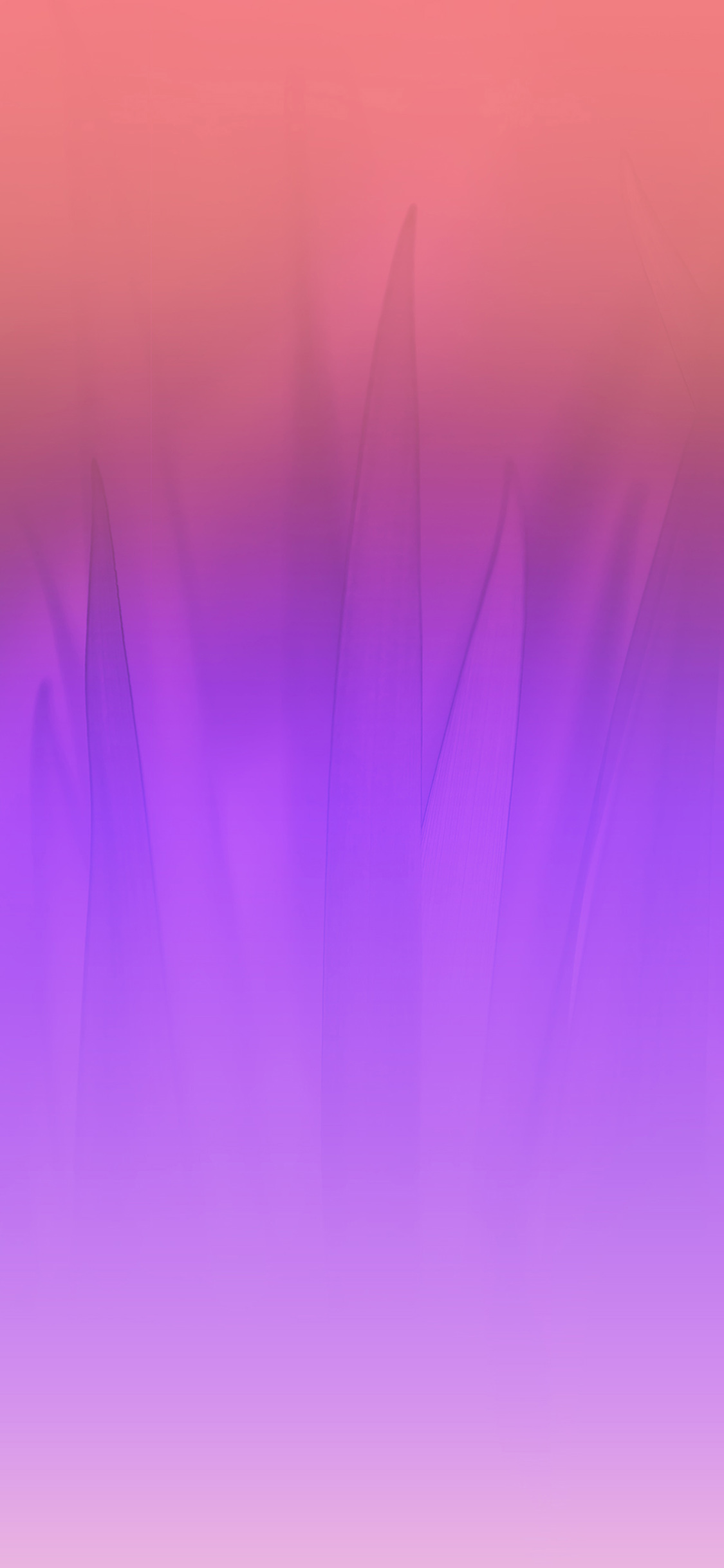 iPhoneXpapers.com-Apple-iPhone-wallpaper-vj76-soft-blue-nature-purple-pink-leaf-pattern