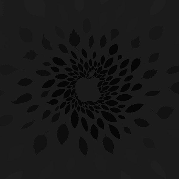 iPapers.co-Apple-iPhone-iPad-Macbook-iMac-wallpaper-vj79-apple-store-leafs-art-pattern-bw-dark-wallpaper