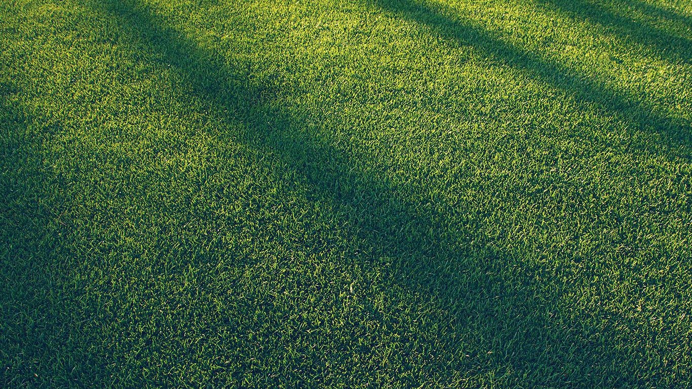 desktop-wallpaper-laptop-mac-macbook-air-vj86-lawn-grass-sunlight-green-blue-pattern-wallpaper