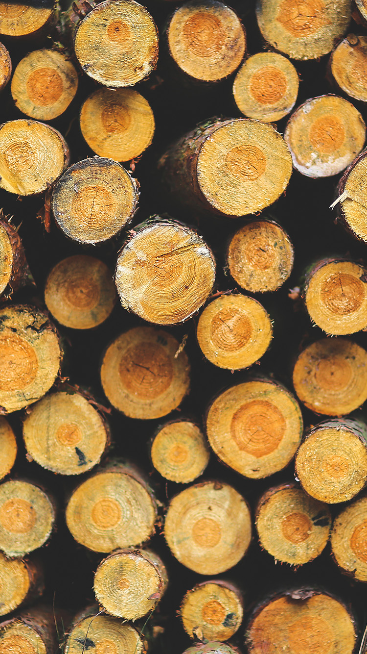 iPhone6papers.co-Apple-iPhone-6-iphone6-plus-wallpaper-vk17-wood-circle-piles-nature-pattern