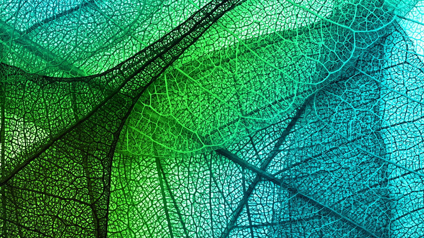 wallpaper-desktop-laptop-mac-macbook-vm02-leaves-art-green-blue-pattern-wallpaper
