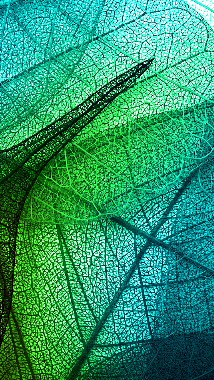 iPhonepapers.com-Apple-iPhone8-wallpaper-vm02-leaves-art-green-blue-pattern