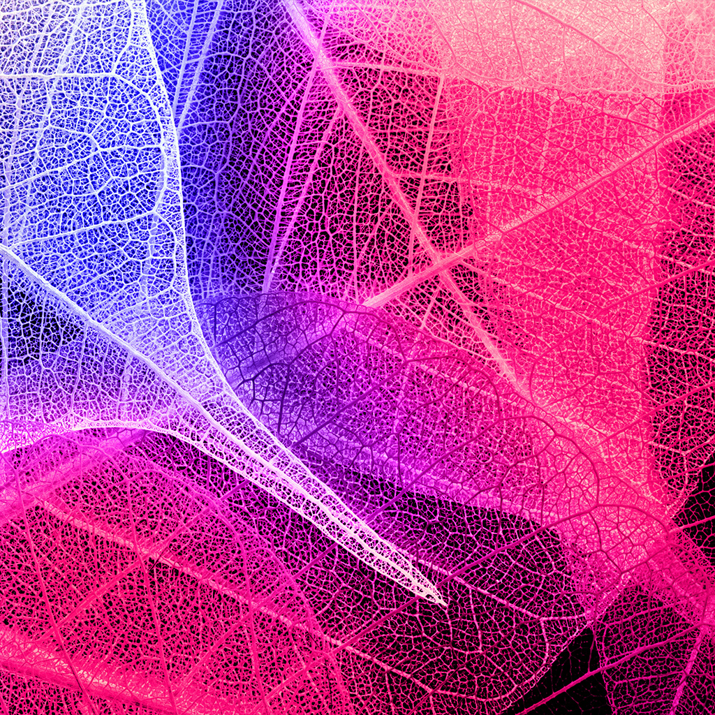 android-wallpaper-vm04-leaves-art-pink-blue-pattern-wallpaper