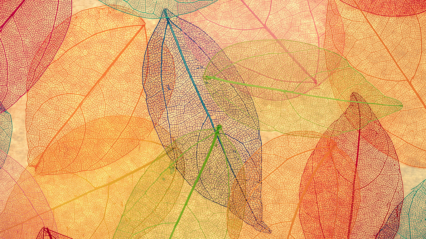 desktop-wallpaper-laptop-mac-macbook-airvm23-rainbow-color-leaf-art-fall-nature-pattern-wallpaper