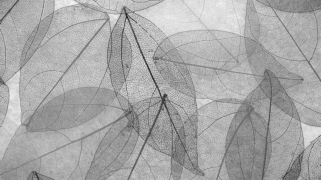 desktop-wallpaper-laptop-mac-macbook-air-vm25-dark-bw-leaf-art-fall-nature-pattern-wallpaper
