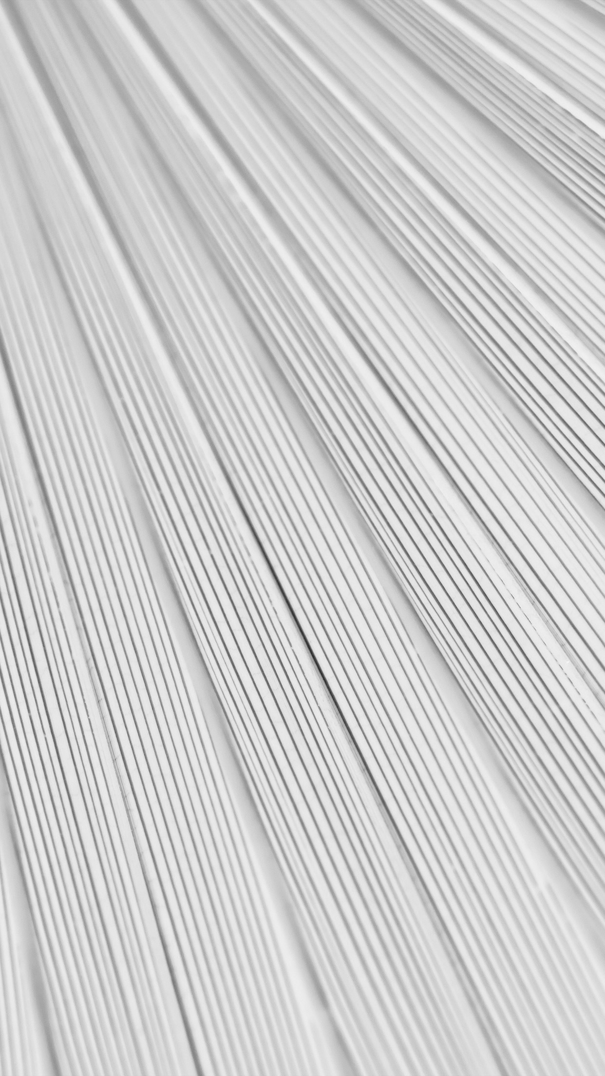 Vn32 Leaf White Surface Texture Nature Pattern Bw Wallpaper