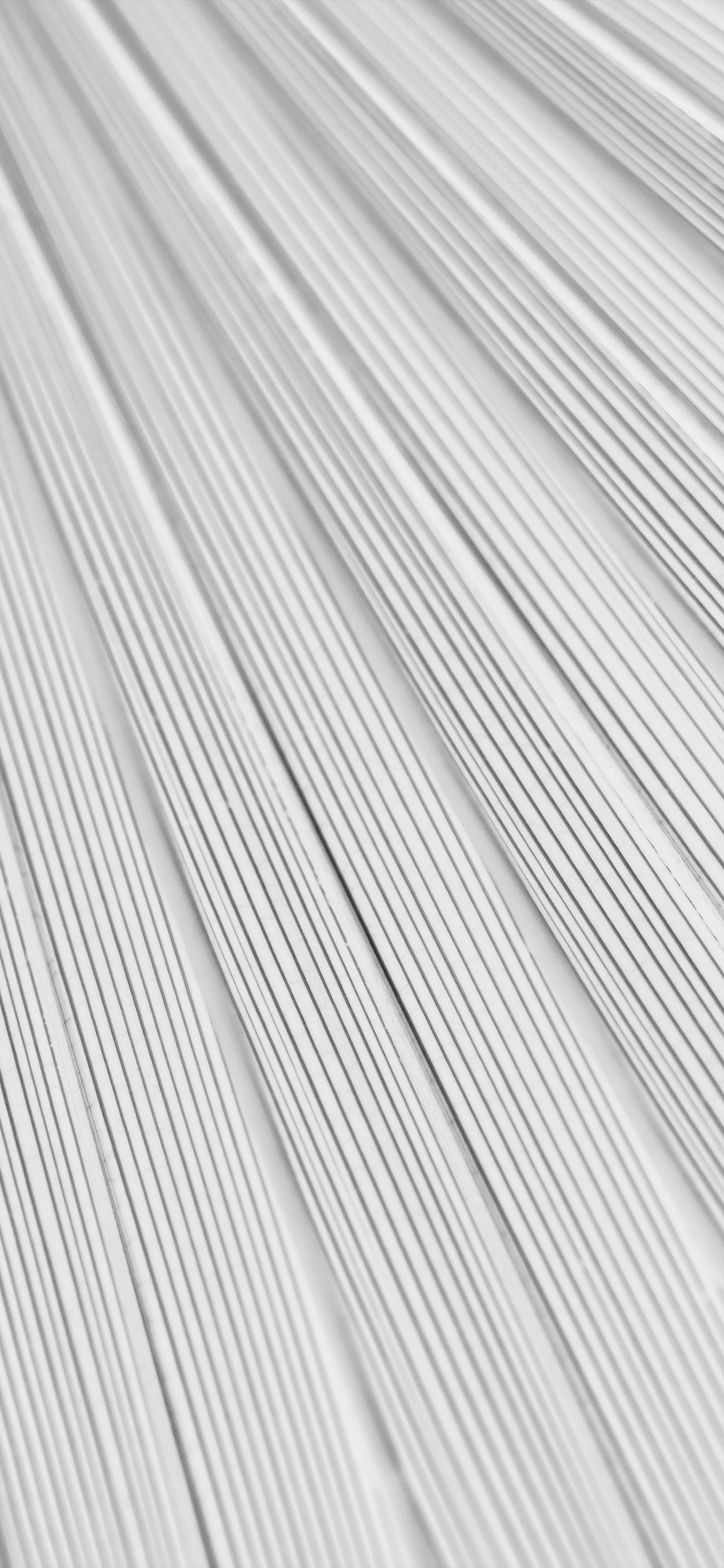 iPhoneXpapers.com-Apple-iPhone-wallpaper-vn32-leaf-white-surface-texture-nature-pattern-bw