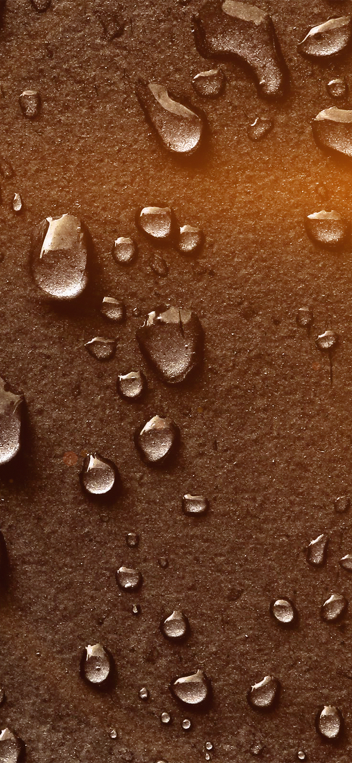 iPhoneXpapers.com-Apple-iPhone-wallpaper-vn36-drops-of-rain-brown-nature-texture-pattern-flare