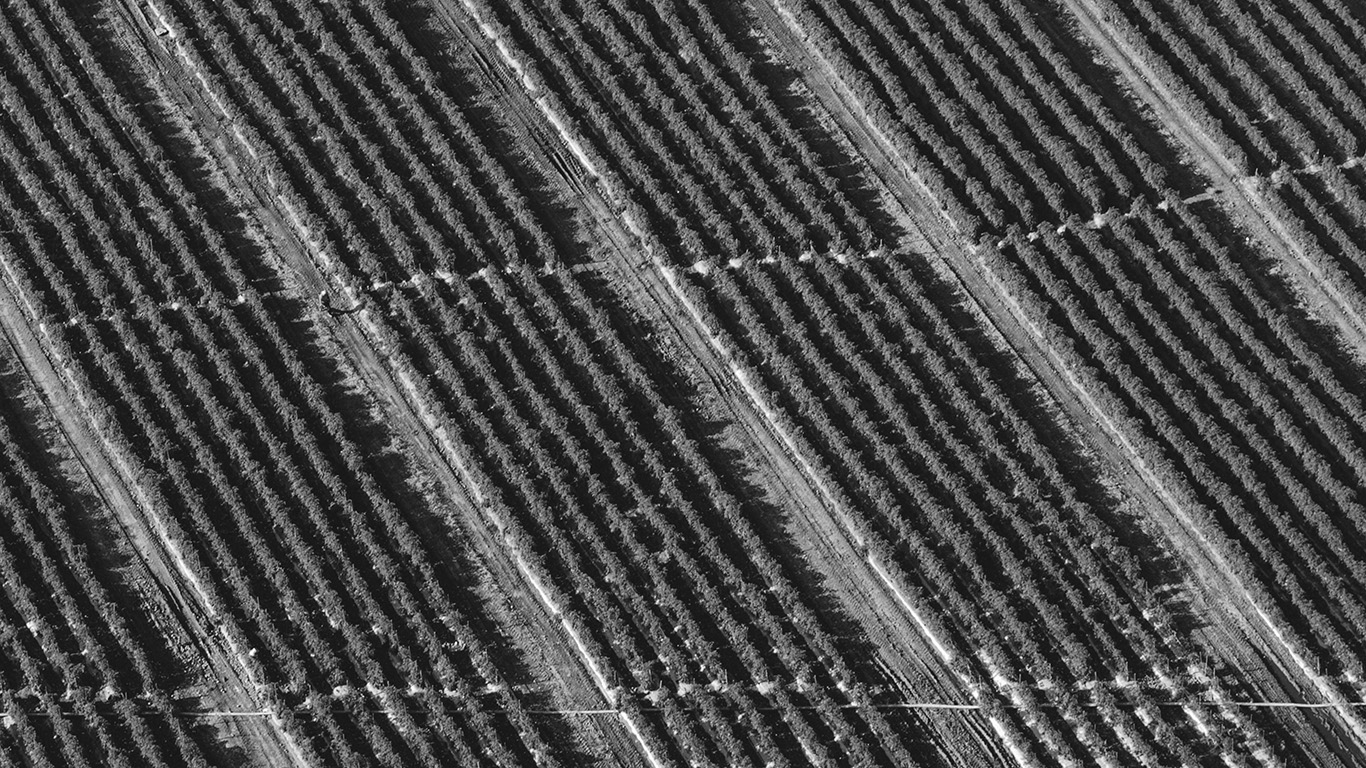 desktop-wallpaper-laptop-mac-macbook-air-vn62-bw-dark-field-nature-pattern-wallpaper