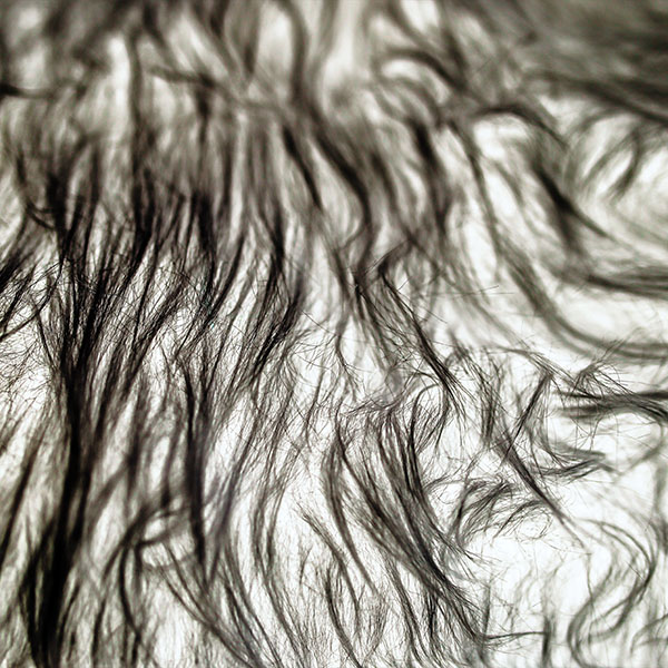 iPapers.co-Apple-iPhone-iPad-Macbook-iMac-wallpaper-vo25-fur-designer-black-pattern-wallpaper
