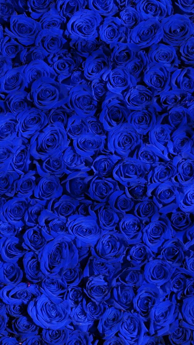 Blue pattern wallpaper for iphone - photo#9