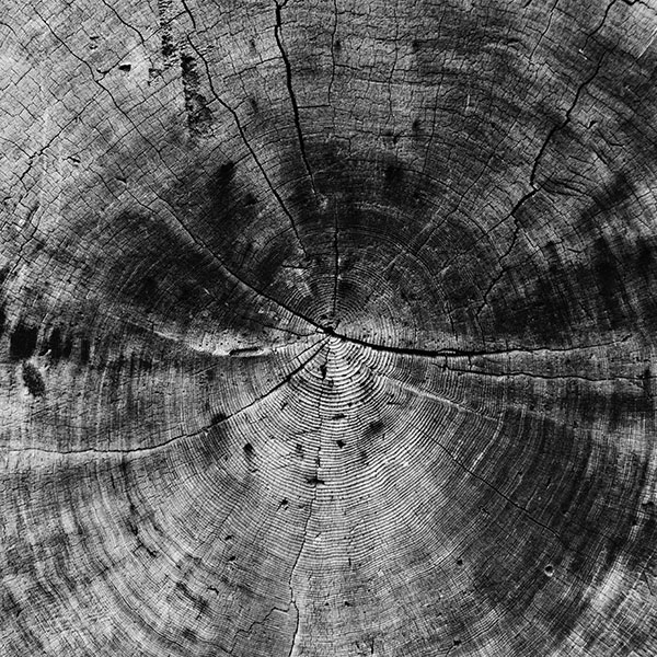 iPapers.co-Apple-iPhone-iPad-Macbook-iMac-wallpaper-vq73-wood-line-texture-old-dark-pattern-bw-wallpaper