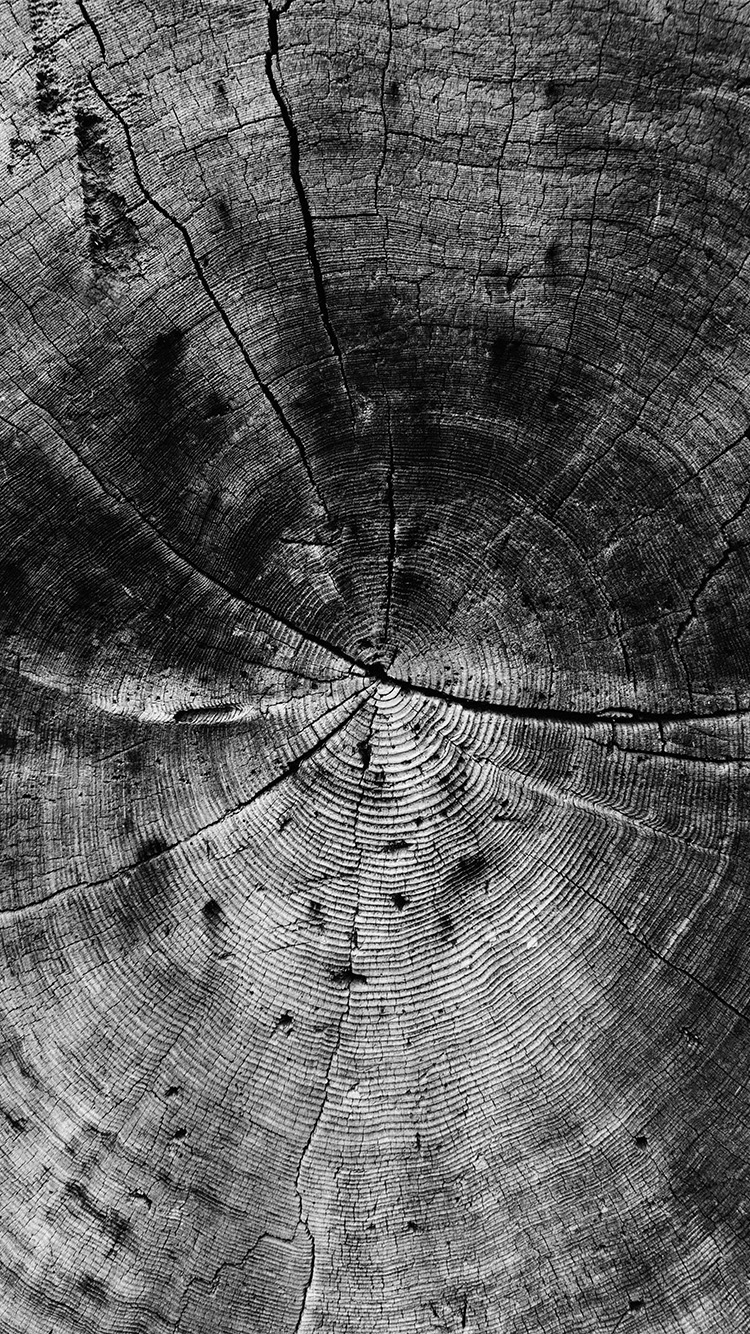 iPhone6papers.co-Apple-iPhone-6-iphone6-plus-wallpaper-vq73-wood-line-texture-old-dark-pattern-bw