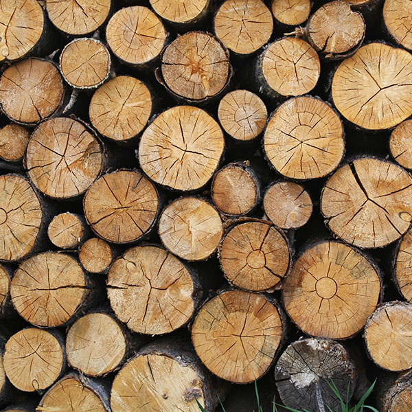 iPapers.co-Apple-iPhone-iPad-Macbook-iMac-wallpaper-vr09-wood-nature-cut-pattern-wallpaper