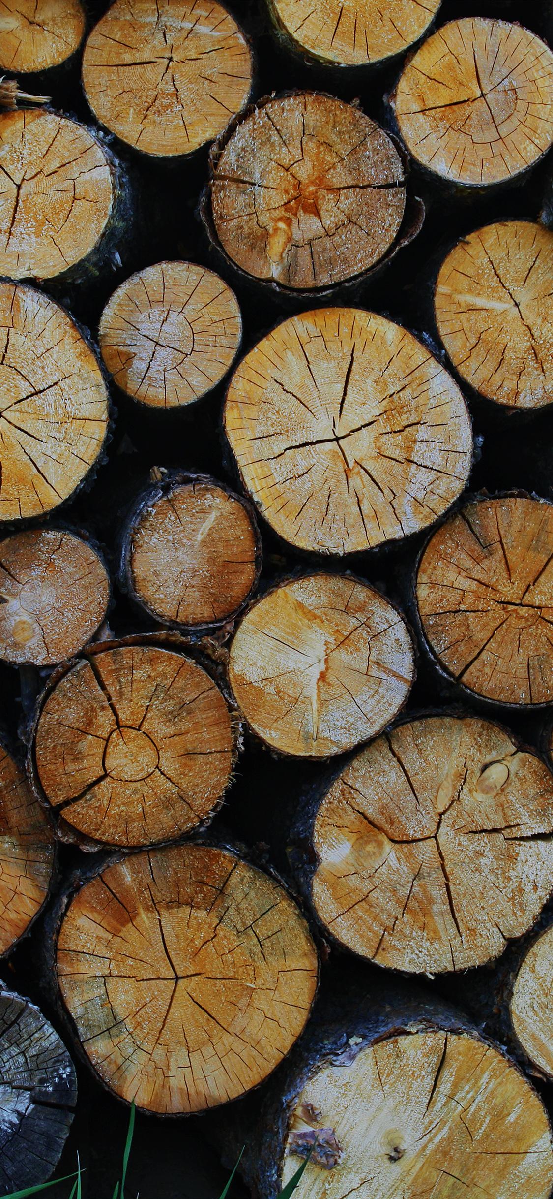 iPhonexpapers.com-Apple-iPhone-wallpaper-vr10-wood-nature-cut-pattern-dark