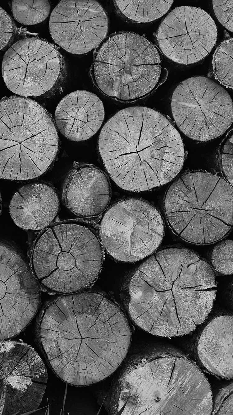 iPhone6papers.co-Apple-iPhone-6-iphone6-plus-wallpaper-vr11-wood-nature-cut-pattern-dark-bw