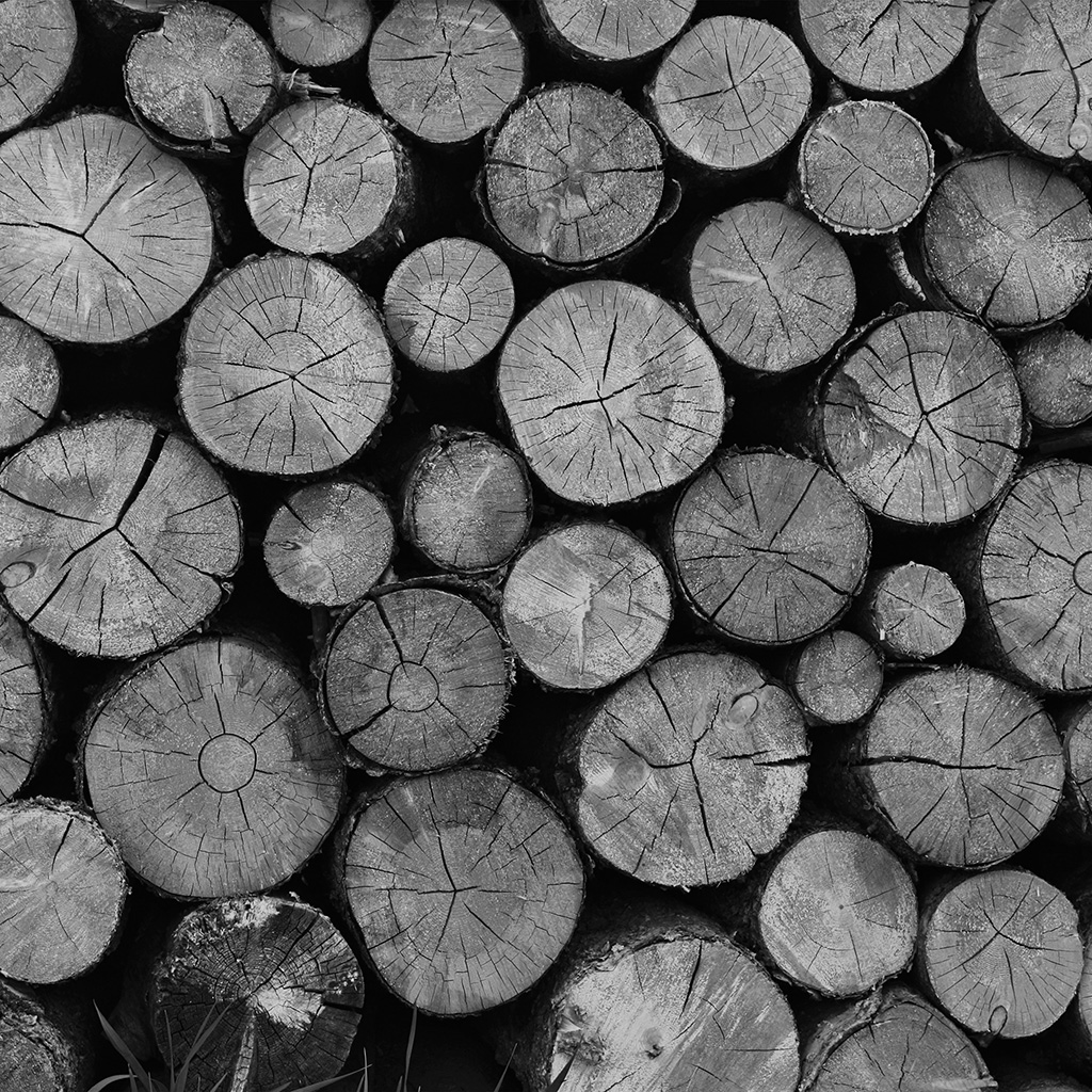 wallpaper-vr11-wood-nature-cut-pattern-dark-bw-wallpaper