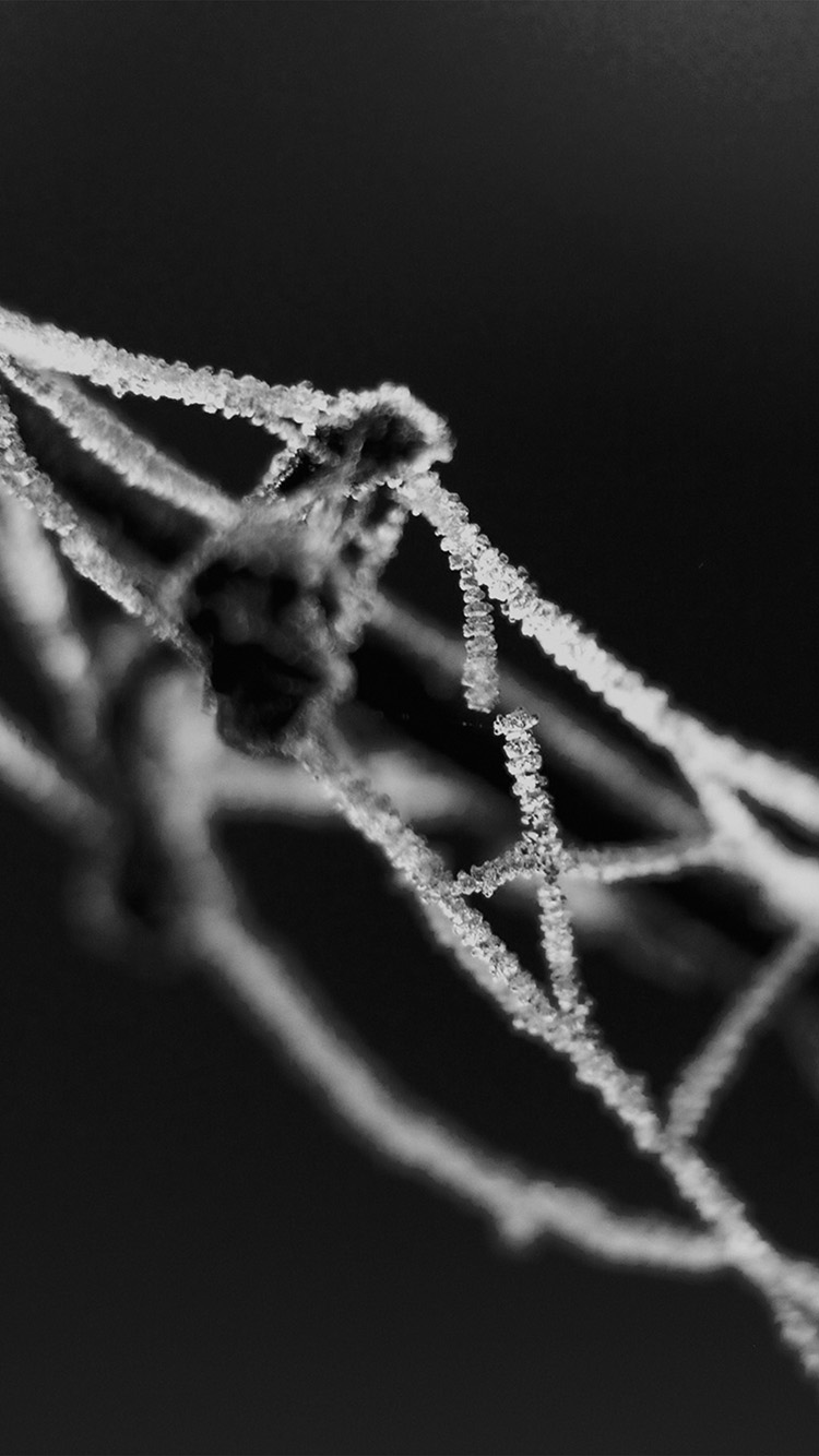 iPhone6papers.co-Apple-iPhone-6-iphone6-plus-wallpaper-vr88-broken-chain-bw-dark-bokeh-pattern