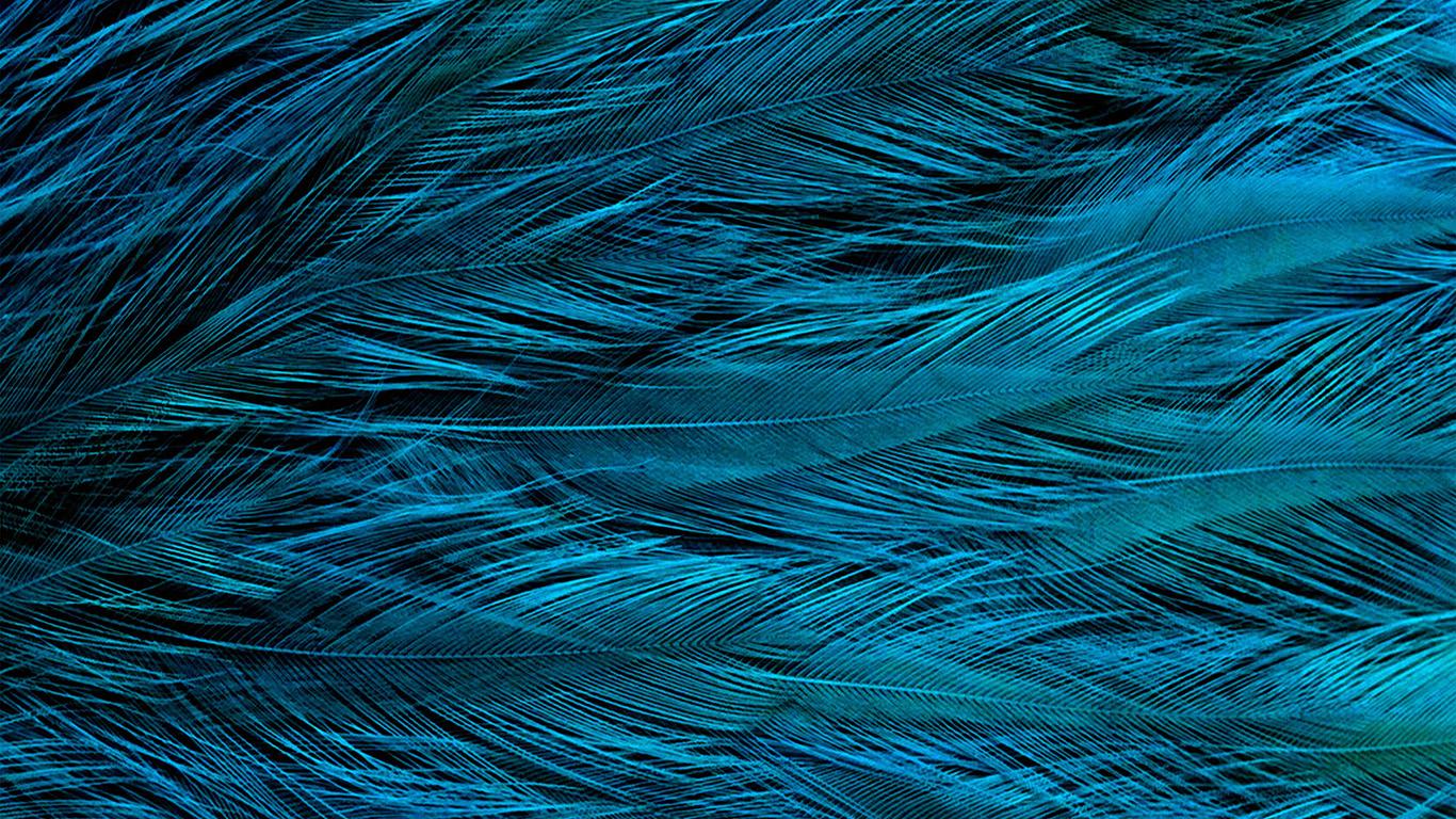 desktop-wallpaper-laptop-mac-macbook-air-vt31-feather-blue-bird-texture-pattern-wallpaper
