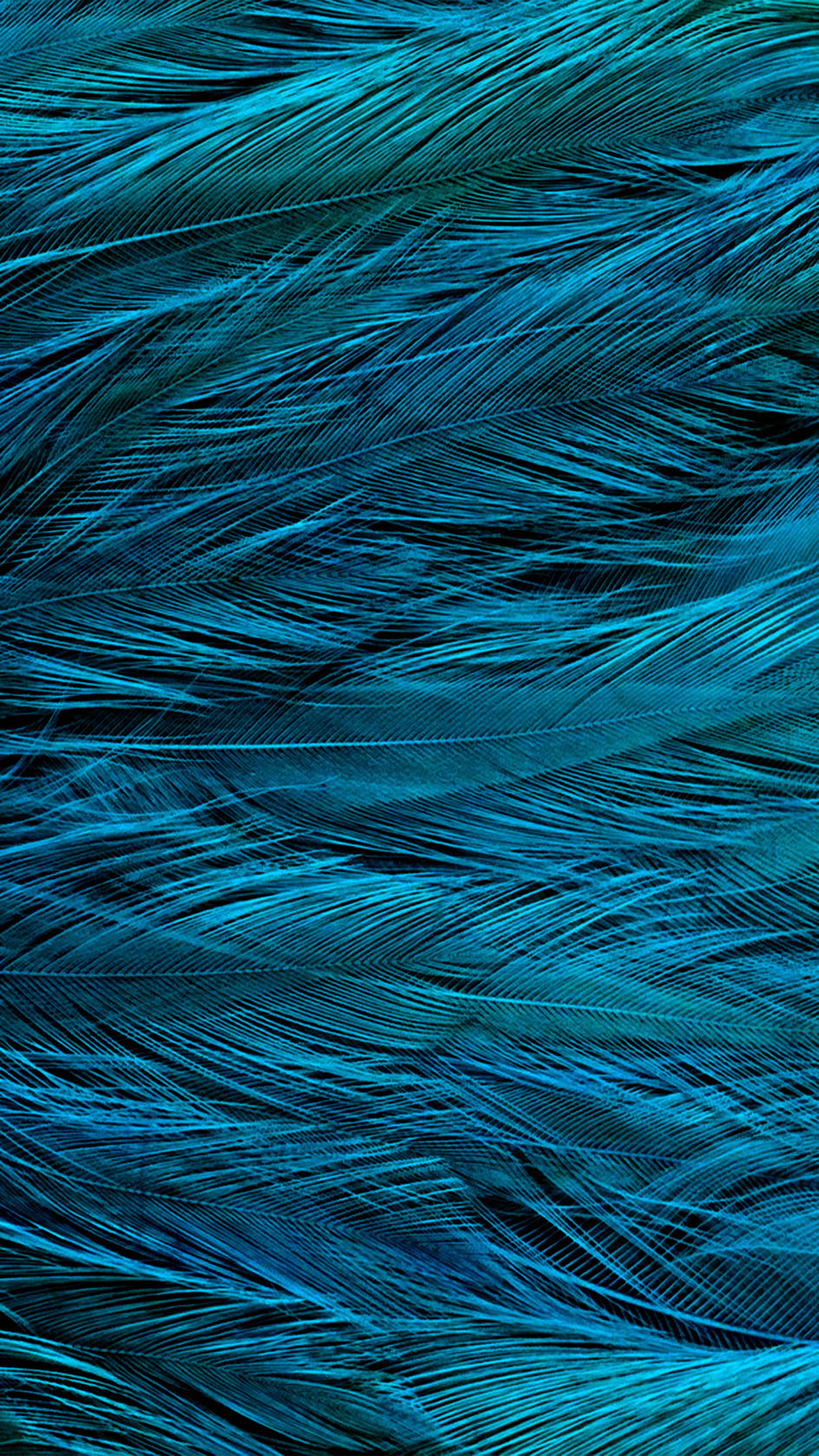 Iphonepaperscom Iphone 8 Wallpaper Vt31 Feather Blue