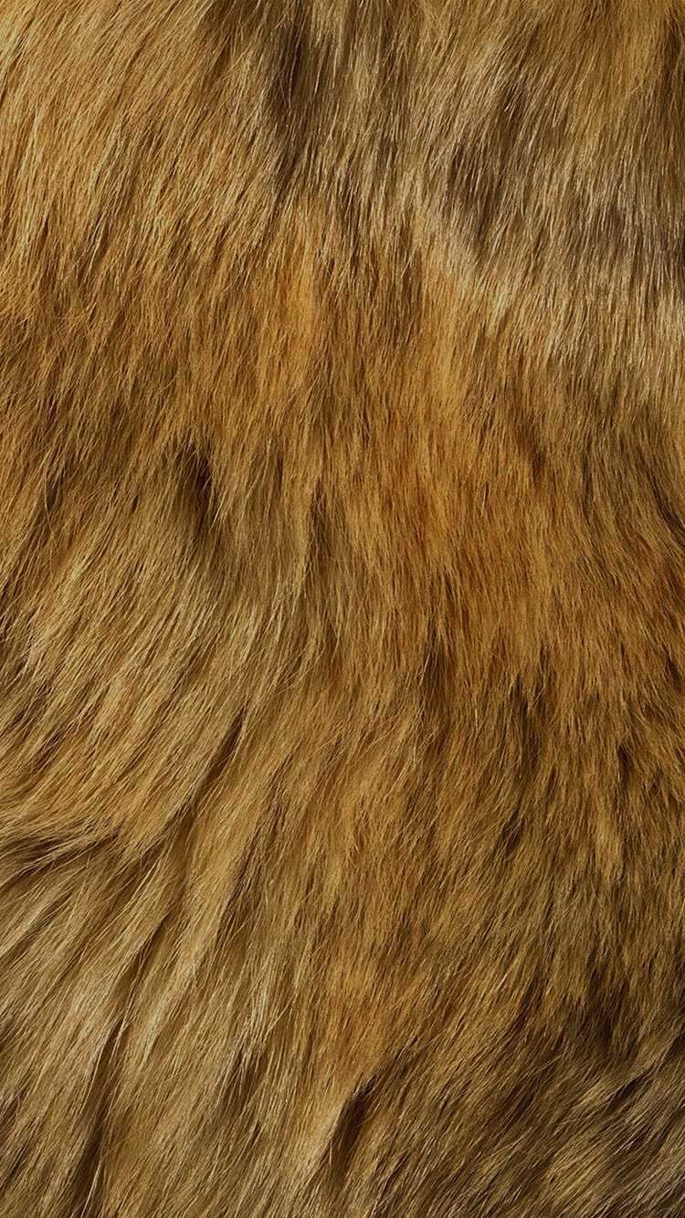 iPhone6papers.co-Apple-iPhone-6-iphone6-plus-wallpaper-vt37-texture-fur-dog-orange-pattern-gold