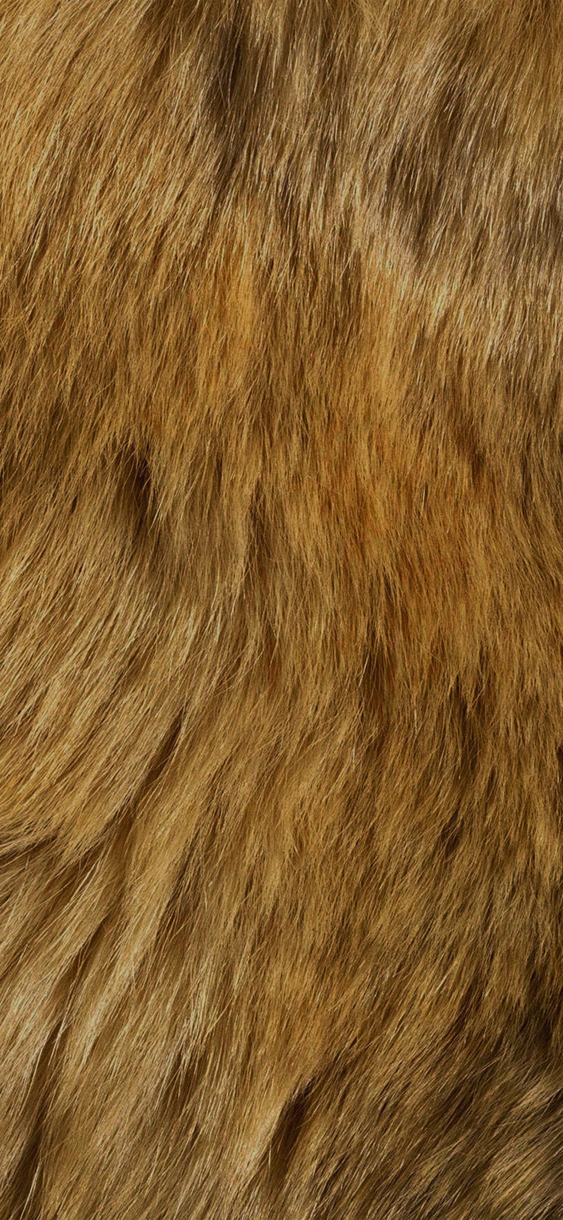 iPhoneXpapers.com-Apple-iPhone-wallpaper-vt37-texture-fur-dog-orange-pattern-gold