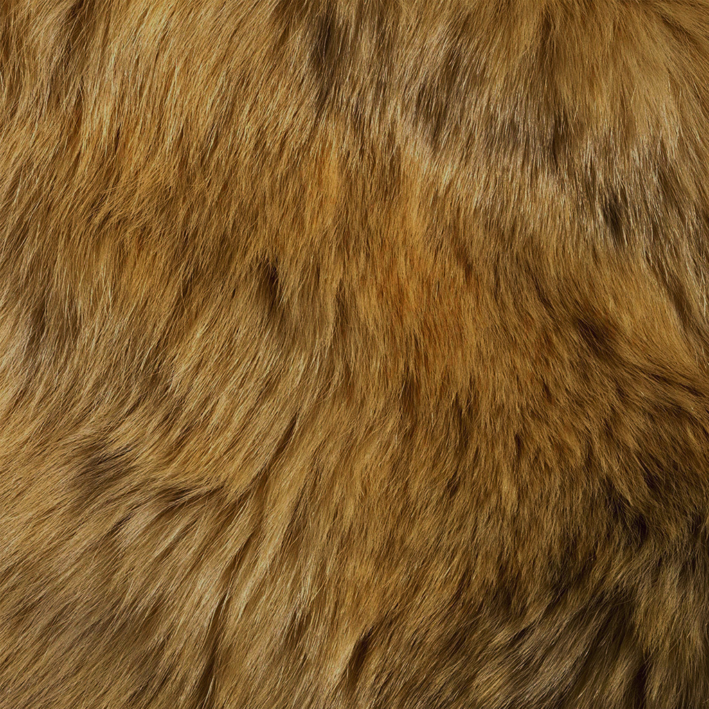 android-wallpaper-vt37-texture-fur-dog-orange-pattern-gold-wallpaper