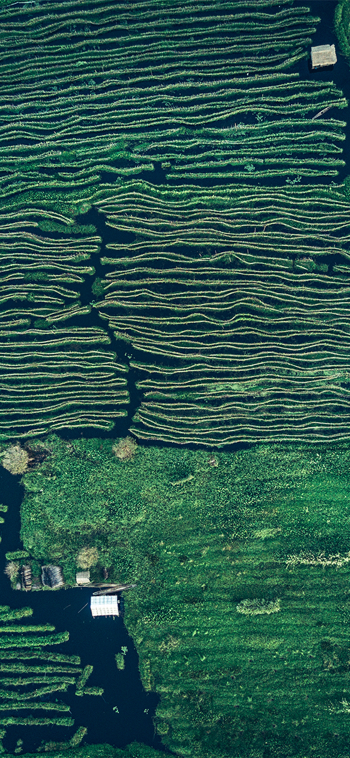 iPhonexpapers.com-Apple-iPhone-wallpaper-vx50-earthview-sky-green-pattern-background-blue