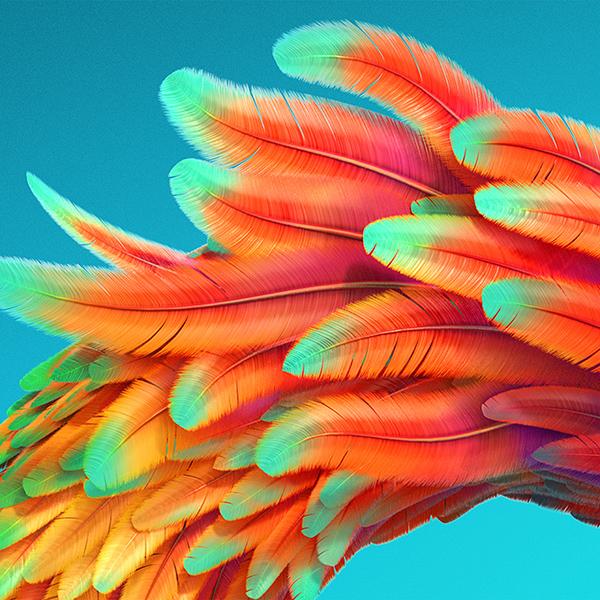 iPapers.co-Apple-iPhone-iPad-Macbook-iMac-wallpaper-vz54-bird-color-rainbow-red-pattern-background-wallpaper
