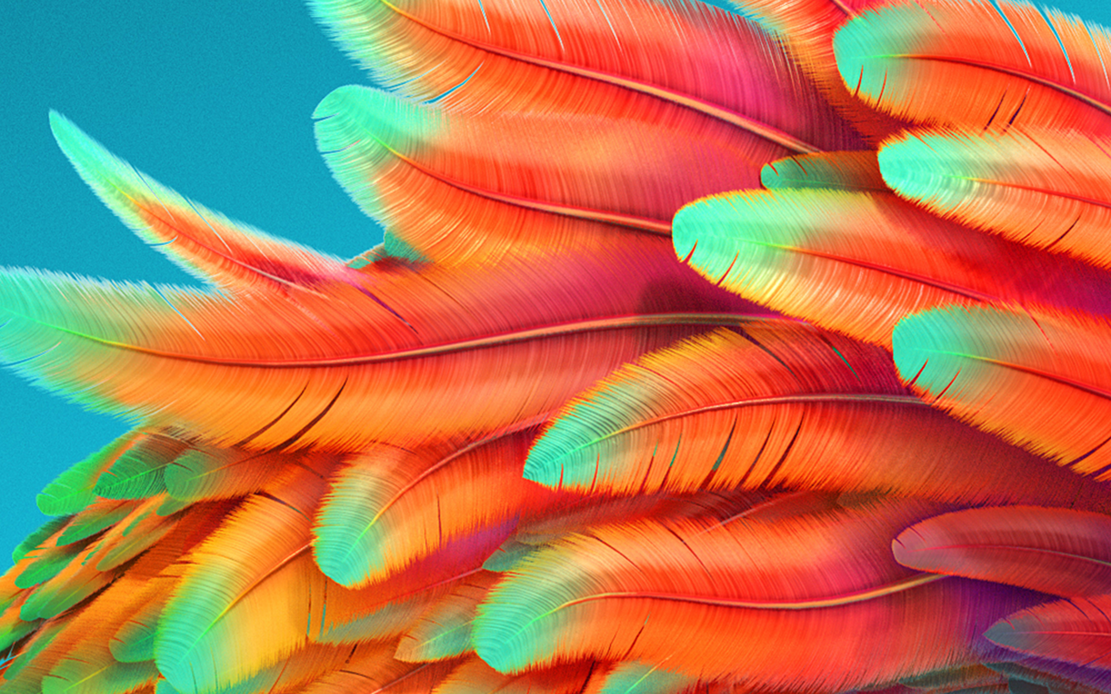 Vz54 bird color rainbow red pattern background wallpaper - 4k colorful wallpaper ...
