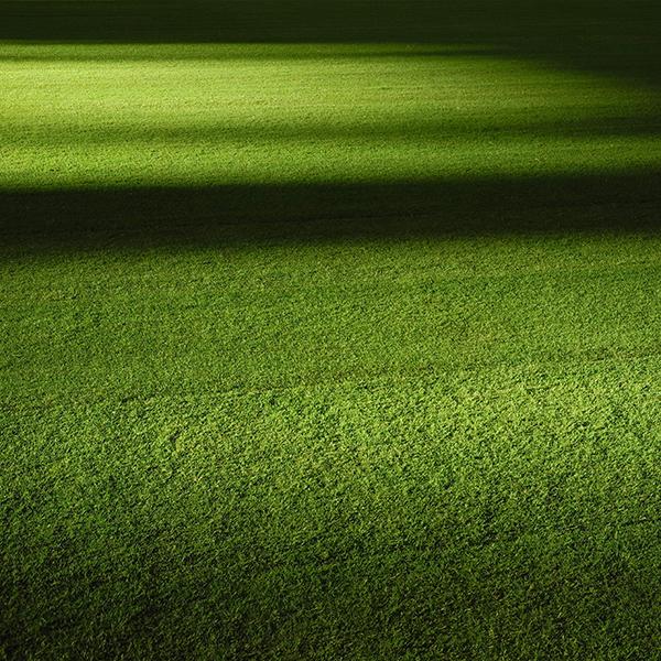 iPapers.co-Apple-iPhone-iPad-Macbook-iMac-wallpaper-wa59-field-green-night-grass-pattern-background-wallpaper